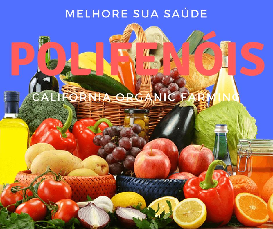10 dicas r pidas de alimentos ricos em polifen is - Alimentos ricos en gluten ...